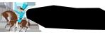 logo-cofradia-del-desarme-negro